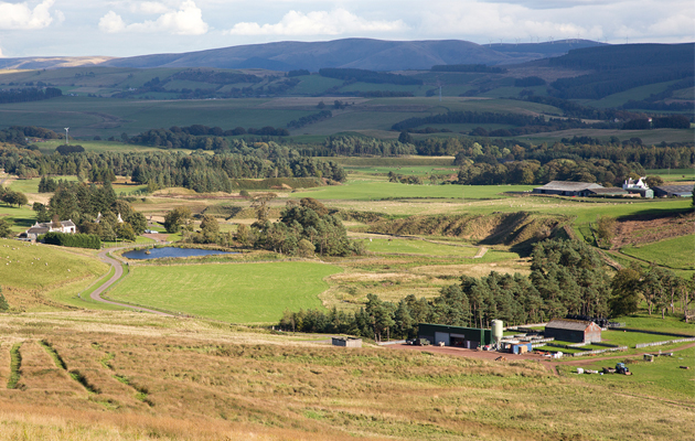 scottish borders sporting estate
