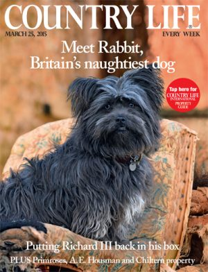 Country Life March 25 2015