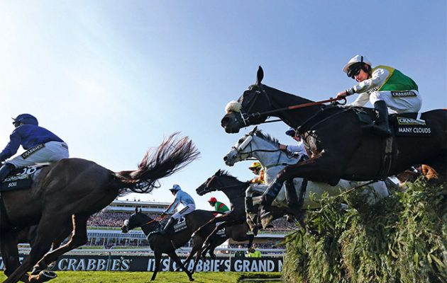 Grand National tips 2016