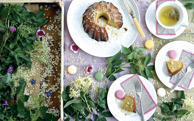 elderflower recipes