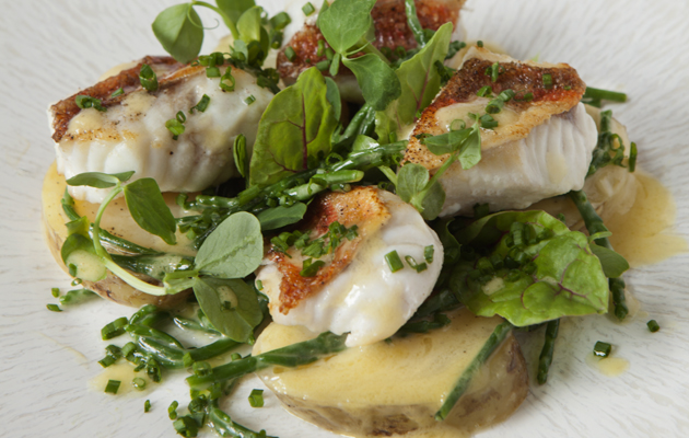 J Sheekey Oyster Bar recipe red gurnard salad