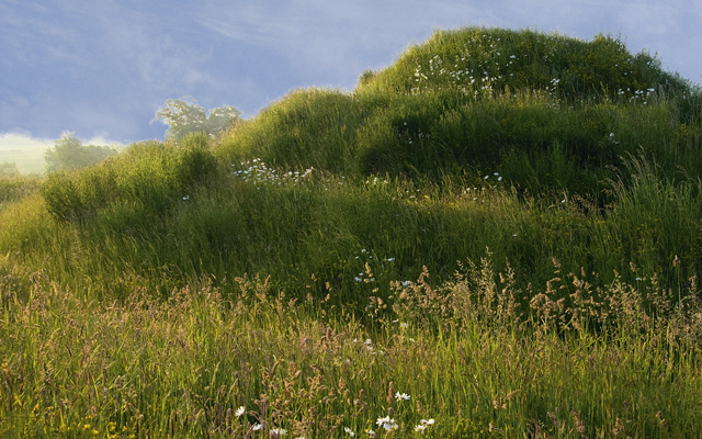 How to create a mound in the garden country life for Mounding grass