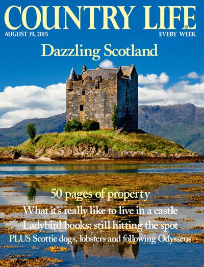 Country life august 19 2015 country life for Country living magazine uk recipes