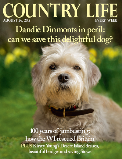 Country Life August 26 2015