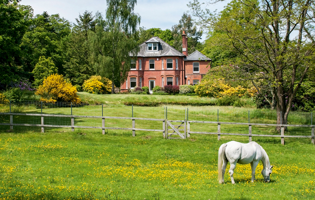 interest in equestrian estates remains consistent