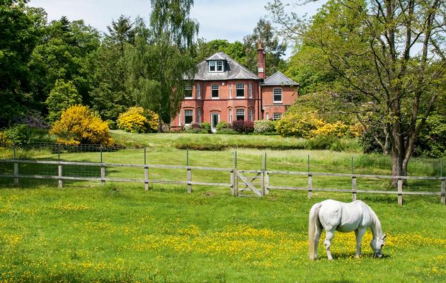 interest in equestrian estates remains consistent