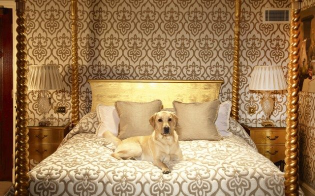 Whether You Re In London For Work A Weekend Away Or Longer Break It S No Necessary To Leave Your Dog Behind As More Of The Capital Hotels Are