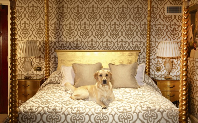 dog friendly hotels in london