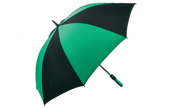 Umbrella With Parrot Handle