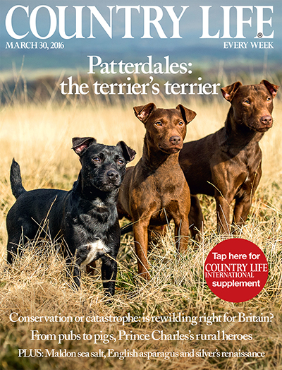 Country Life March 30 2016