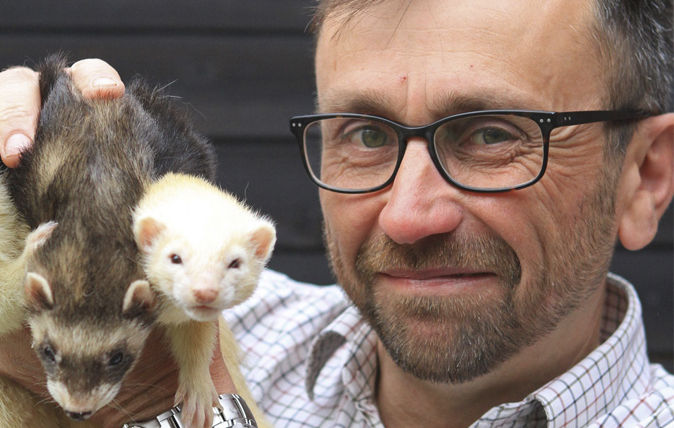 Pakefield Ferrets at the Field & Country Fair