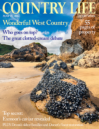 Country Life May 25 2016