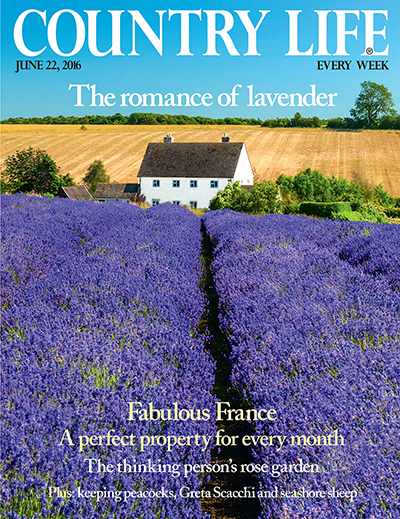 Country Life June 22 2016