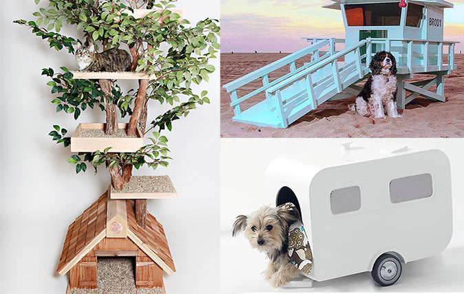 Southeast Big Boys Toys : The £ cat treehouse and other extraordinary animal