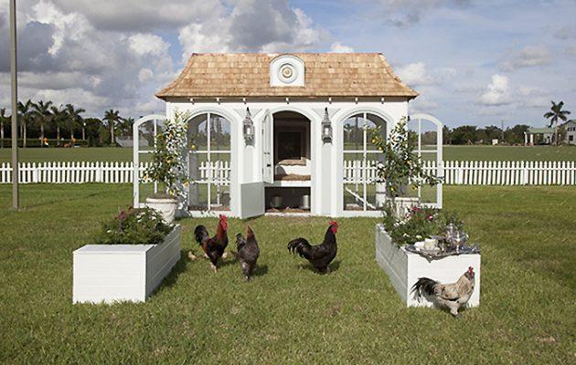 Versaille of hen houses