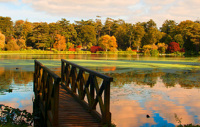 Autumn colour at Mount Stewart, Northern Ireland