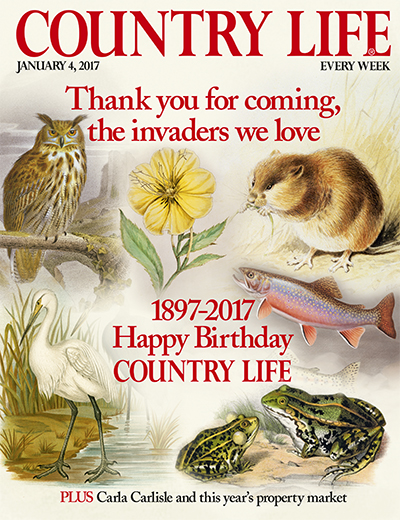 Country Life January 4 2017