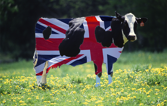 Southeast Big Boys Toys : How british beef can take on the finest kobe from