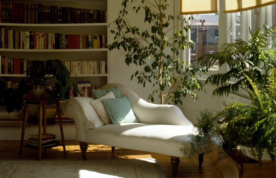 Houseplants and white chaise longue in eighties living room