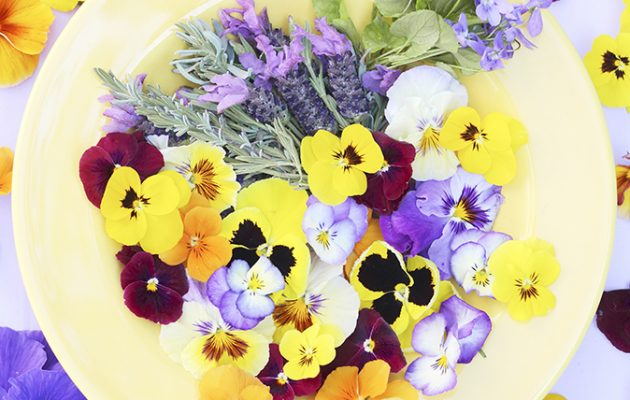 Edible flowers 15 beautiful blooms that really are good enough to edible flowers mightylinksfo