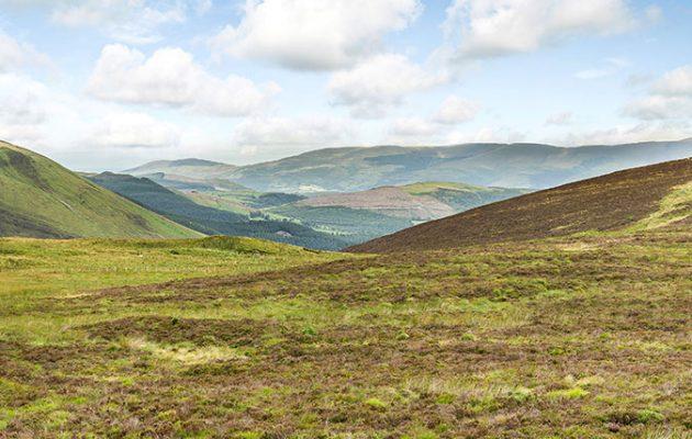 Bugeilyn Moor