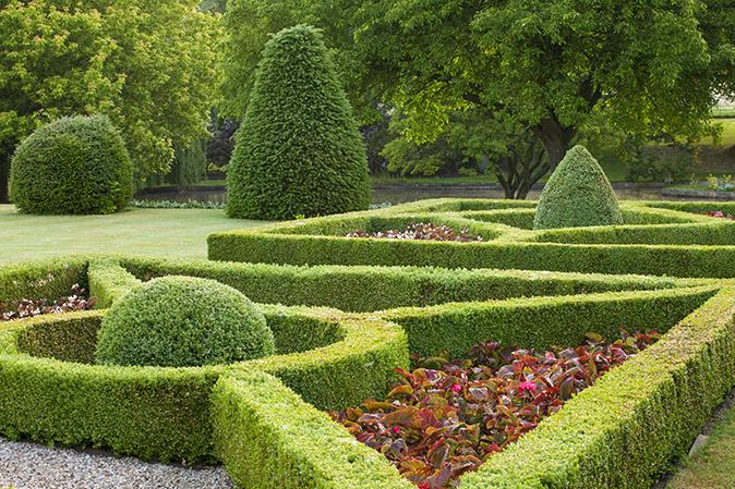 Yard & Garden cover image
