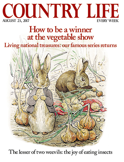 Country Life August 23 2017