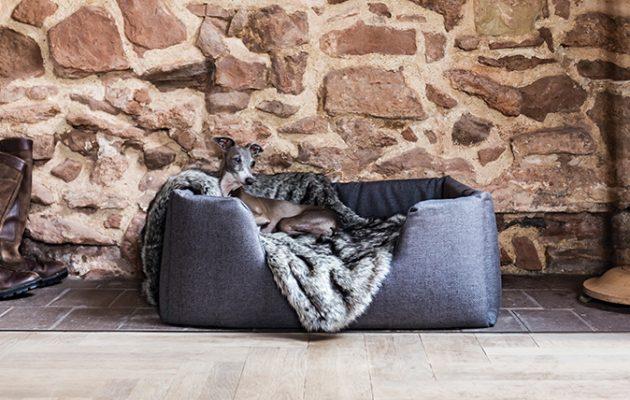 designer dog bed furniture. Plain Bed Stylish Dog Beds Intended Designer Dog Bed Furniture O