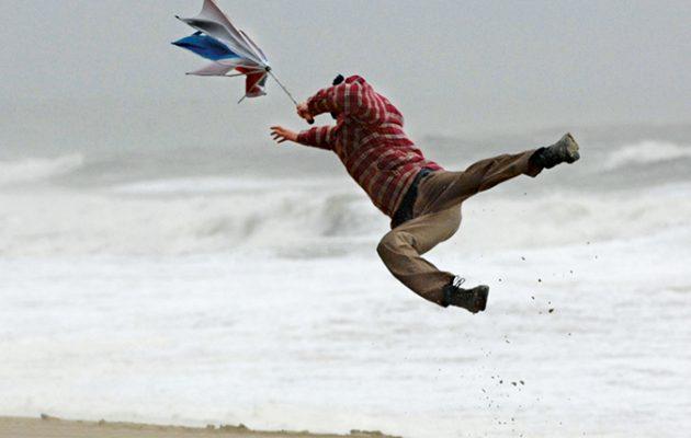 best british umbrellas