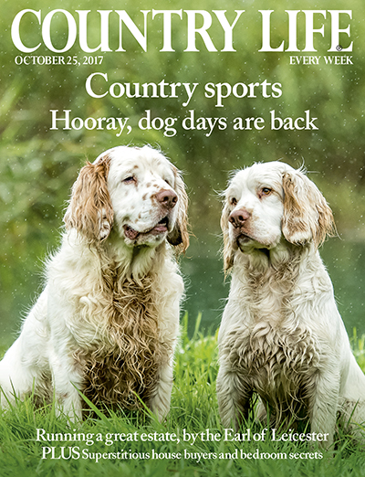 Country Life October 25 2017