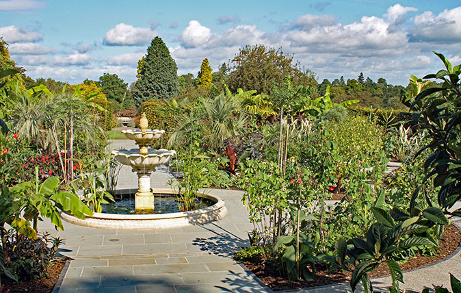 exotic garden at RHS Wisley