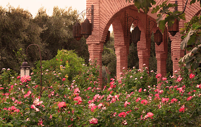 The Beldi Country Club garden in Marrakesh, photographed by Alessio Mei