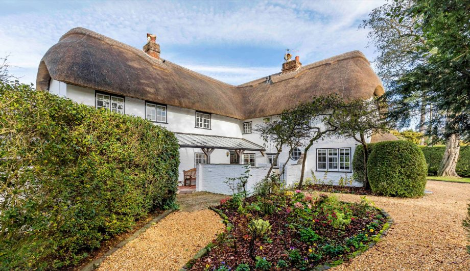 Five beautiful thatched cottages for sale