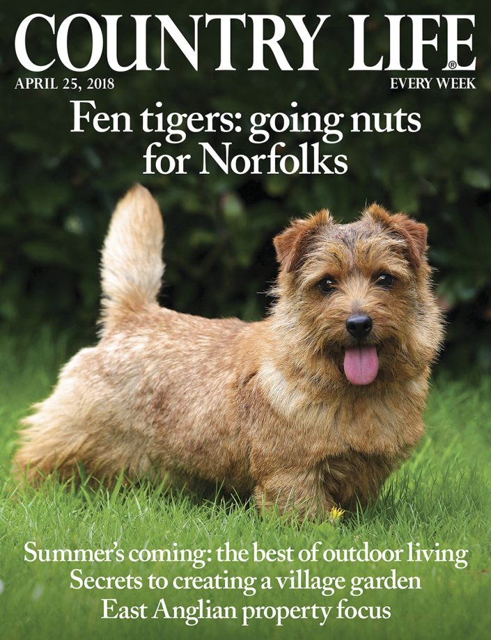 Country Life April 25 2018