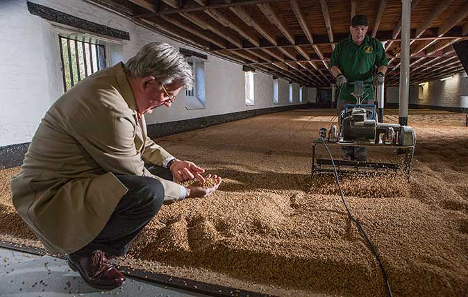 Warminster Maltings, Britain's oldest malting. Ploughing and turning and levelling the barley. ©Richard Cannon/Country Life Picture Library