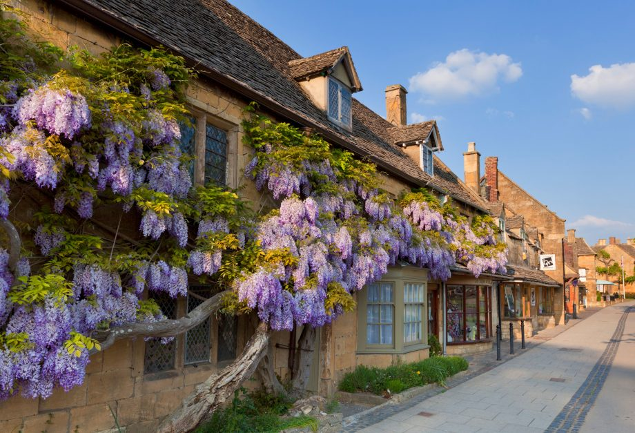 The idyllic image of cottages covered in flowering wisteria on a Cotswold stone wall. These homes are in the village of Broadway, but there are all sorts of other options for those looking to move to the Cotswolds.