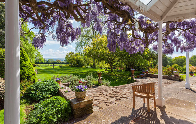 House with great view and wisteria
