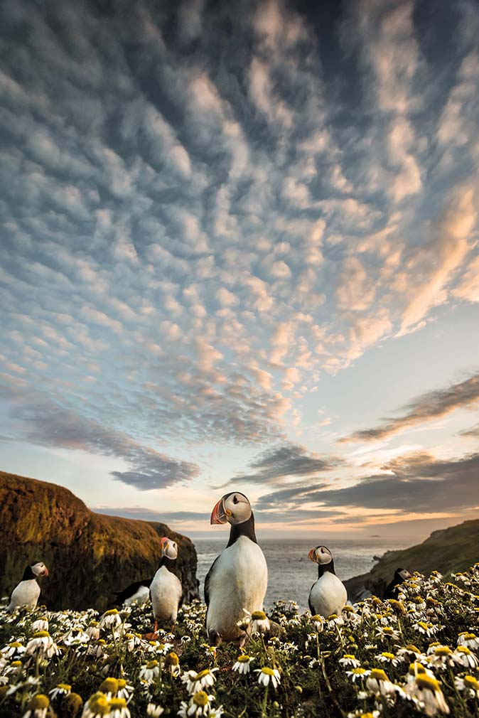 © Landschap Fotograaf van het jaar awards - Matthew Cattell