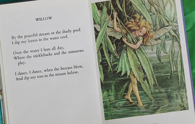 The Willow Fairy and Willow poem from Flower Fairies of the Trees by Cicely M Barker - via Alamy © The Estate of Cicely Barker