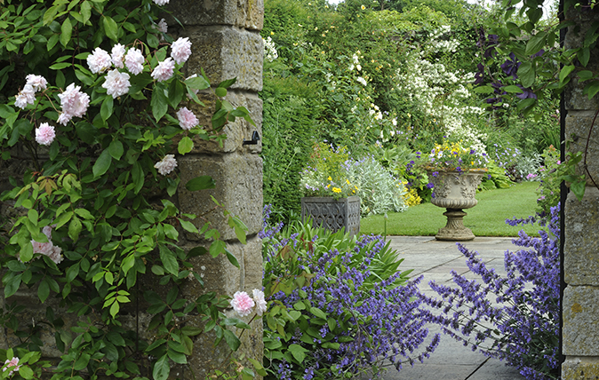 Stanton Fence garden near Mortpeth, Northumberland (©Val Corbett/Country Life Picture Library)