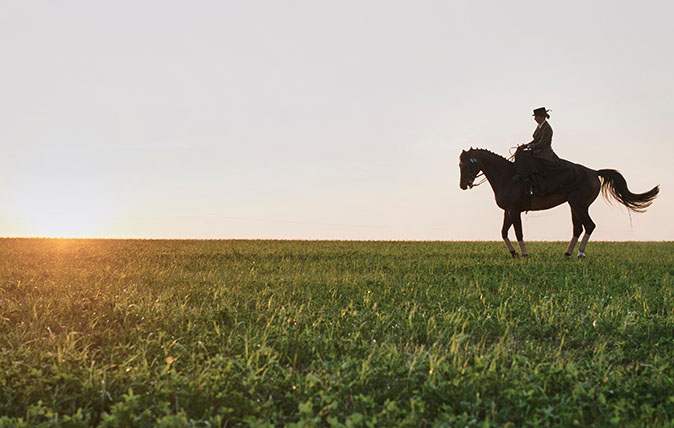 FENYX8 Silhouetted dressage horse and rider training in field at sunset