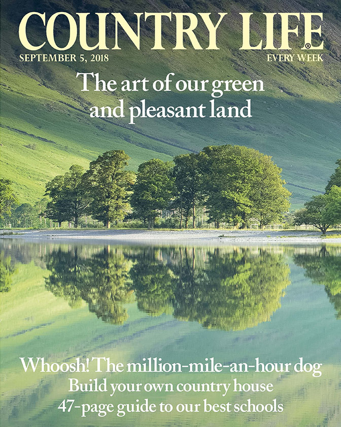 August 5 Cover Country Life
