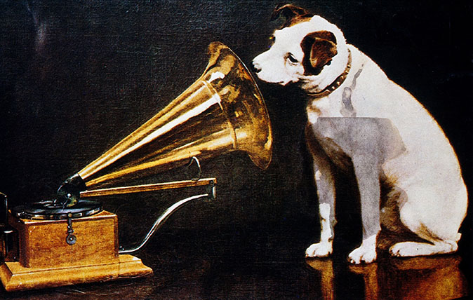 Curious questions: Do dogs like listening to music? - Country Life