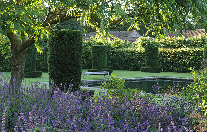 The pond in the Silent Garden at Scampston which is surrounded by 24 yew columns and nepeta in the foreground