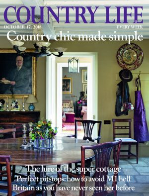 cover country life october 17