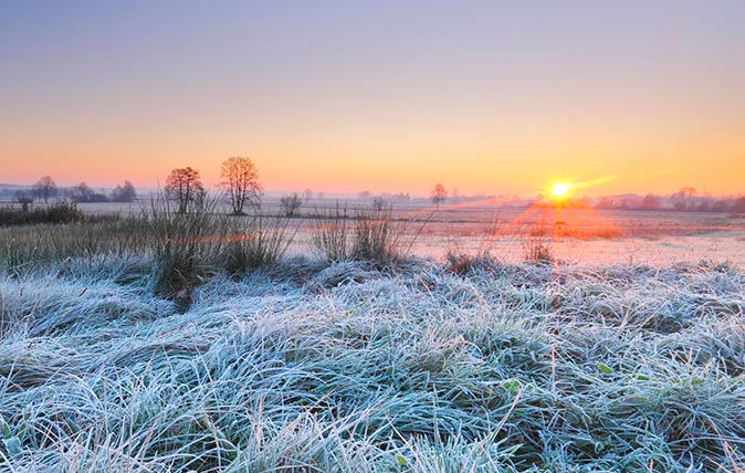 Frosty field at sunrise