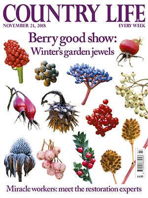 Country Life cover November 21 2018