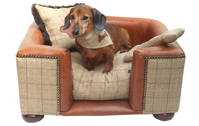 Country Life Top 10: Luxury dog beds