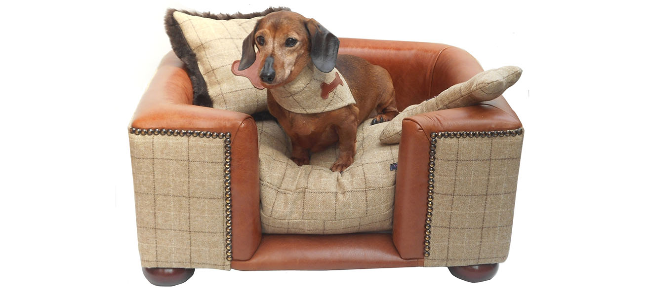 Country Life Top 10 Luxury Dog Beds