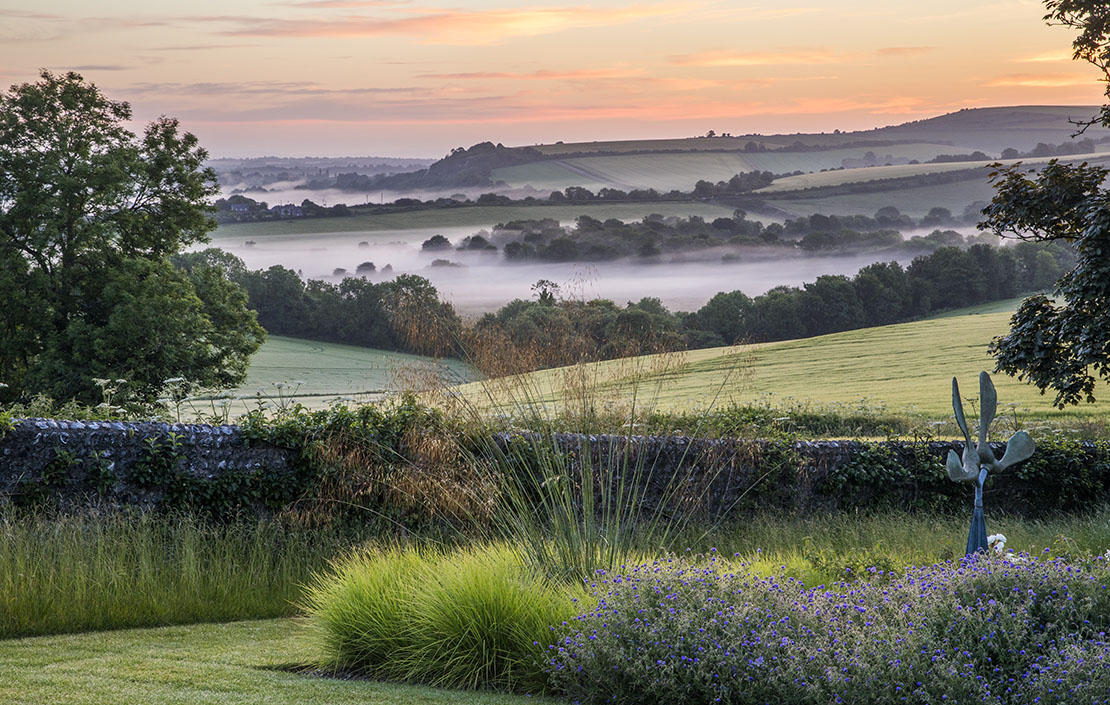 12 spectacular photographs from the International Garden Photographer of the Year competition